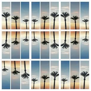 PicsArt_1435492264875